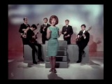 Lulu & The Luvvers - Shout