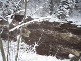 Пороги на речке Селезневке, где водится смелая  маленькая птичка оляпка